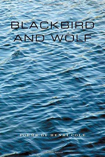 Blackbird and Wolf: Poems PDF