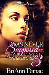 I Was Never Supposed to Love You 3