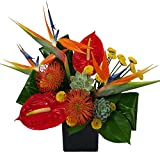 Ashland Addison- ''The Tropics''- Fresh Hand Delivered Bouquet- Chicago Area