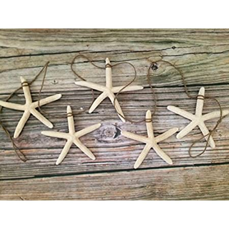 51q75R4HShL._SS450_ Beachy Starfish and Seashell Garlands