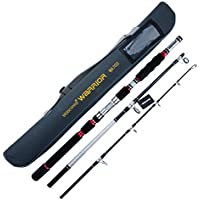 BERRYPRO 3-Piece Spinning Rod Heavy Spinning Fishing Rod...
