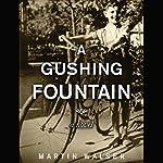Gushing Fountain: A Novel | Martin Walser,David Dollenmayer - translator
