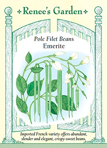 recipe: french pole beans [38]