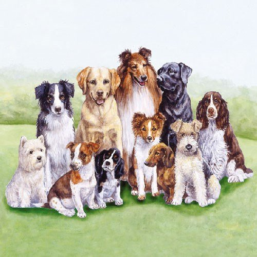 3-ply Pedigree Dogs 4 Paper Napkins for Decoupage 4 Individual Napkins for Craft and Napkin Art. 33 x 33cm