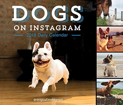 Dogs on Instagram 2018 Daily Calendar