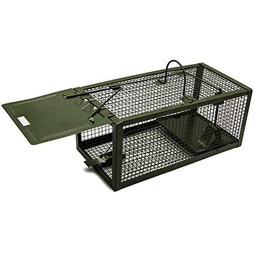 (Luluhome Mouse Trap, Humane Live Cage One-Door Animal Trap (Green))