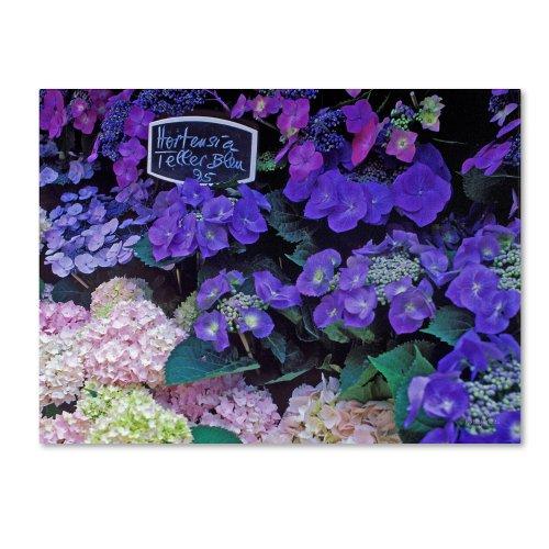 - Paris Flower Market Hydrangeas Artwork by Kathy Yates, 18 by 24-Inch Canvas Wall Art