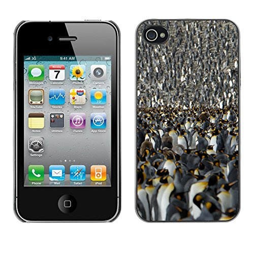 Premio Sottile Slim Cassa Custodia Case Cover Shell // V00001802 Penguin roi // Apple iPhone 4 4S 4G