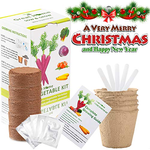 Ind Plant Food (Vegetable Garden Seed Growing Starter Kit Indoor for Kids Easily Grow 5 Fresh Veggie Garden Kit Tomatoes,Purple Carrot,Rainbow Chard,Brussel Sprout Shipping from US (Christmas ONLY 3 Days))