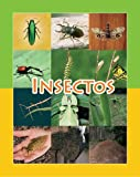 Insectos, Amy White, 1603964207
