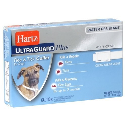 Hartz Flea & Tick Collar 1CT (Pack of 18) by HARTZ