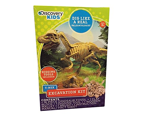 Discovery Kids Dinosaur Excavation Kit - Assorted