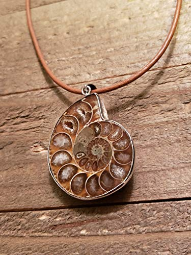 (Fossil Ammonite Pendant Leather Necklace Stone Jewelry Boho (N650))