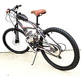 Bicycle Motor Works - The Punisher Motorized Bike Kit
