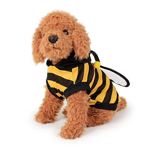 Bumblebee Dog Costumes (FanQube Bumble Bee Dog Clothes Pet Costume for Puppy and Cat (M))
