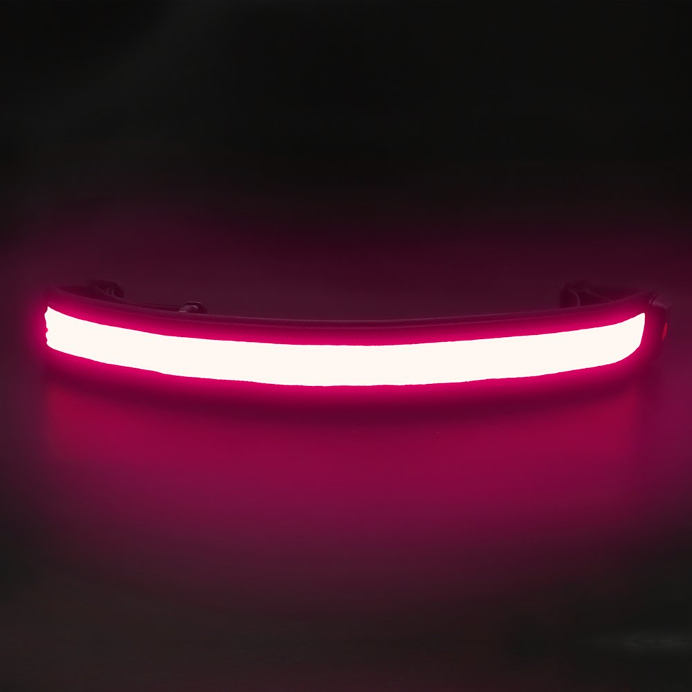 BSeen (TM), USB Rechargeable LED Running Belt, Glow and Flashing, Perfect for the safety of Night Runners, Joggers, Walkers, Pet Owners, Cyclists (Pink)