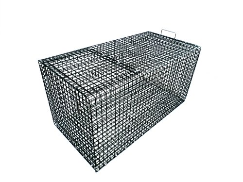(Model 402.5C - Collapsible, Large, Coated Fish Live Box)