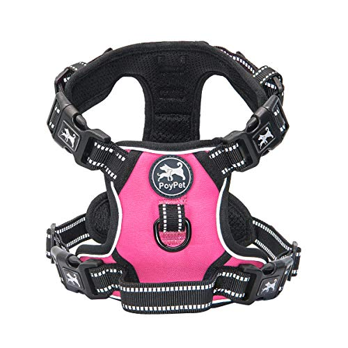 PoyPet No Pull Dog Harness with 4 Buckles(Pink,XS)