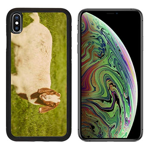 Luxlady Apple iPhone Xs MAX Case Aluminum Backplate Bumper Snap Cases Image ID: 34232218 Goat on a Green Grass as Sign of 2015 Year by Chinese Calendar Vintage t