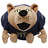 NCAA Pittsburgh Panthers Orbiez