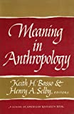 Meaning in Anthropology, Henry A. Selby, 0826304567