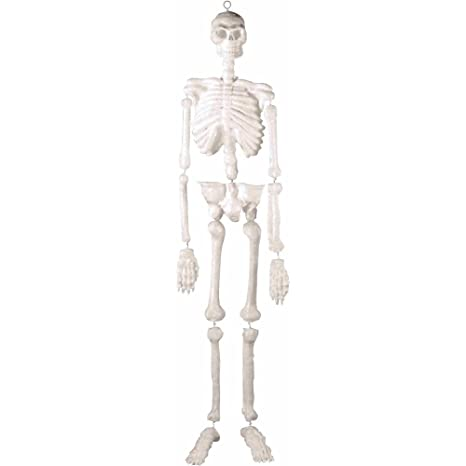 Amazon.com: Giant 5 Foot Skeleton Prop: Office Products