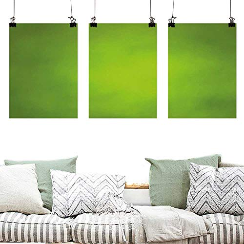 Canvas Prints Wall Decor Art Sage Abstract Green Background with Blurred Color Ecology Growth Woodland Soft Smooth Look Office Art Decoration 3 Panels 24x35inchx3pcs Lime Green