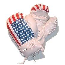 USA Flag Boxing Gloves Size 16 Oz