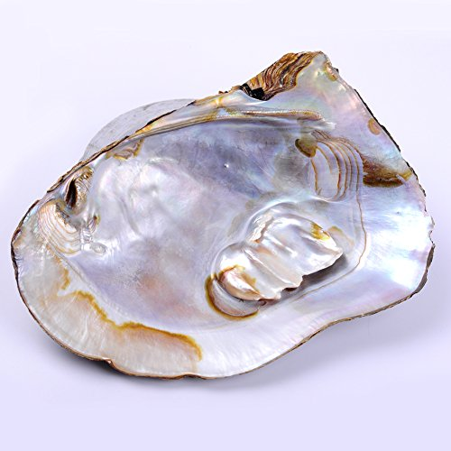 Oyster Shell Crafts - 6