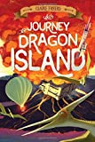 The Journey to Dragon Island (The Accidental Pirates)