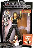 WWE Deluxe Aggression Series 7 Jeff Hardy