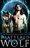 Shattered Wolf: An Mpreg Shifter Romance (The Wildcrest Pack Book 2)
