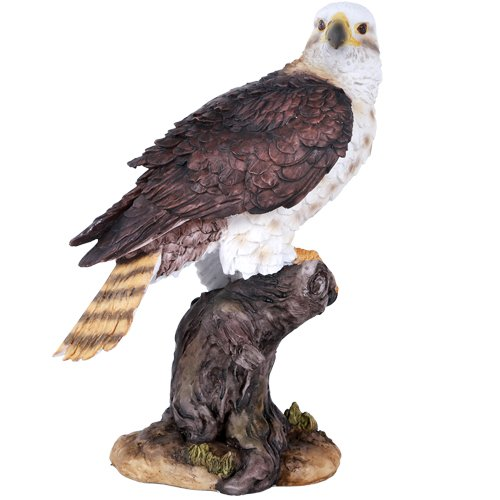 Pacific Giftware Wildlife Red Tailed Hawk Eagle Birds of Prey Figurine Statue 10 Inch