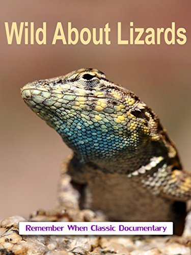 d80ff069c293 Lizards the best Amazon price in SaveMoney.es