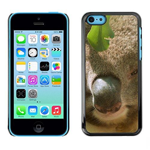 Premio Sottile Slim Cassa Custodia Case Cover Shell // F00032493 Petit panda // Apple iPhone 5C