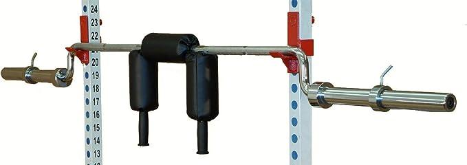 2- TDS 1000lb Safety Squat Bar