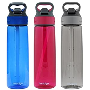 Contigo Autospout Addison Water Bottle, 24oz - Monaco, Sangria & Smoke (3 Pack)