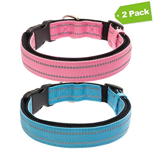 EXPAWLORER 2 Pack Reflective Dog Solid Collar with Buckle, Adjustable Durable Nylon Pet Collars with Neoprene Padding for Medium to Large Dogs, Pink and Blue ()