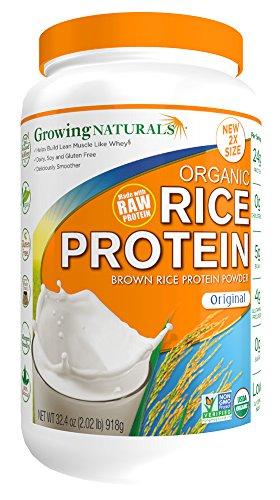 growing rice - 6