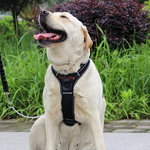 LOSYPET Dog Collar Harness No Pull, Adjustable Strap Vehicle Safety Harness for Large Dog, Comfortable Vest Harnesses Top Handle with Dog Leash