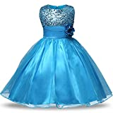 NNJXD Girl Ruffles Vintage Embroidered Sequins Flower Wedding Dress Size (140) 6-7 Years Red