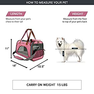 Expandable Airline Approved Pet carrier Bag by Petratronics with Soft Sided Pet Carrier with Fleece Pad, Premium Zippers, Under Seat Compatibility, for Cats, Small Dog