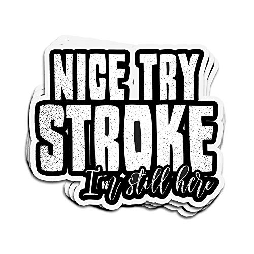 3 PCs Stickers Stroke Awareness Nice Try I'm Still Here Nice Try Im Still Here 4 × 3 Inch Die-Cut Decals for Laptop Window
