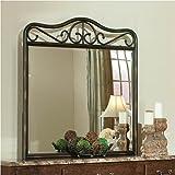 Santa Cruz Metal Mirror In Brown Finish by Standard Furniture