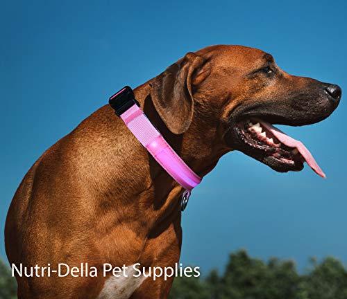 Nutri Della Pet Supplies Rechargeable