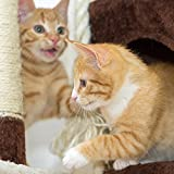 3 Tier Cat Tree- Plush Multi Level Cat Tower with