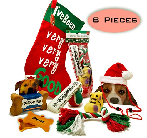 Dog Christmas Stocking Toys and More Bundle of 8 Pieces 1 Stocking filled Dog Toys 1 Treat Storage Box 1 Cute Dog Santa Hat 1 Large Stocking,Perfect Christmas Gift for your fur baby S/M Dogs RED