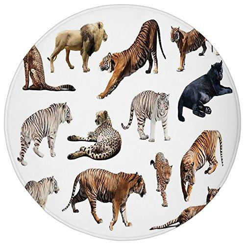 (Round Rug Mat Carpet,Safari Decor,Collection of Tigersand Other Big Wild Cats Predatory Feline Zoo Lying Standing Background,Flannel Microfiber Non-Slip Soft Absorbent,for Kitchen Floor Bathroom)