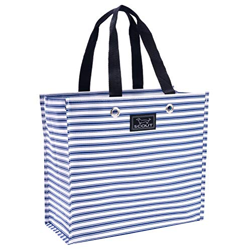 Stripe Package - SCOUT Large Package Reusable Gift Bag, Folds Flat, Water Resistant, Stripe Right