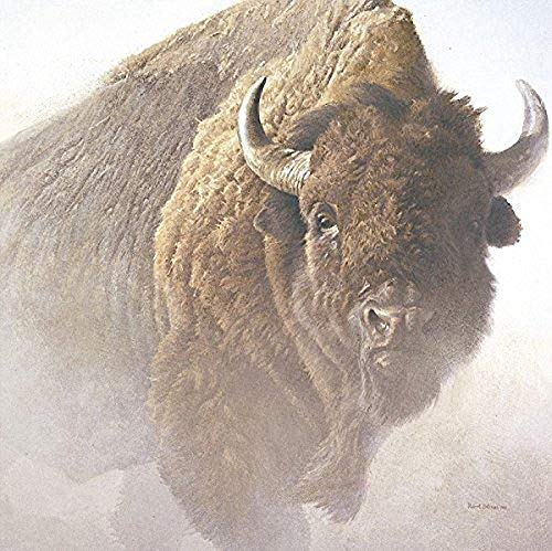 Chief Robert Bateman Buffalo Bison Wildlife Art Print Poster, Overall Size: 26x28, Image Size: 24x24